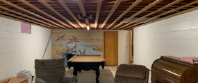 Basement - Family Room